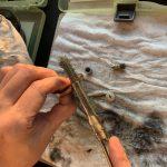 10カルカッタコンクエスト101DC オーバーホール修理 ギア洗浄